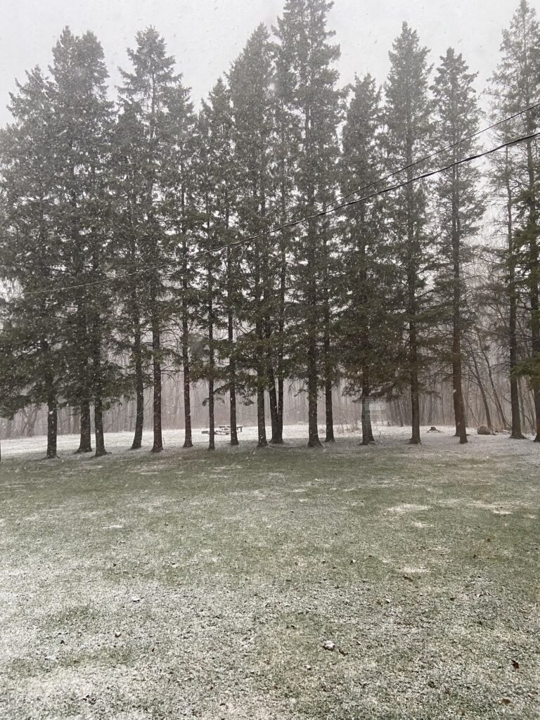 It is the end of April And It Is Still Snowing