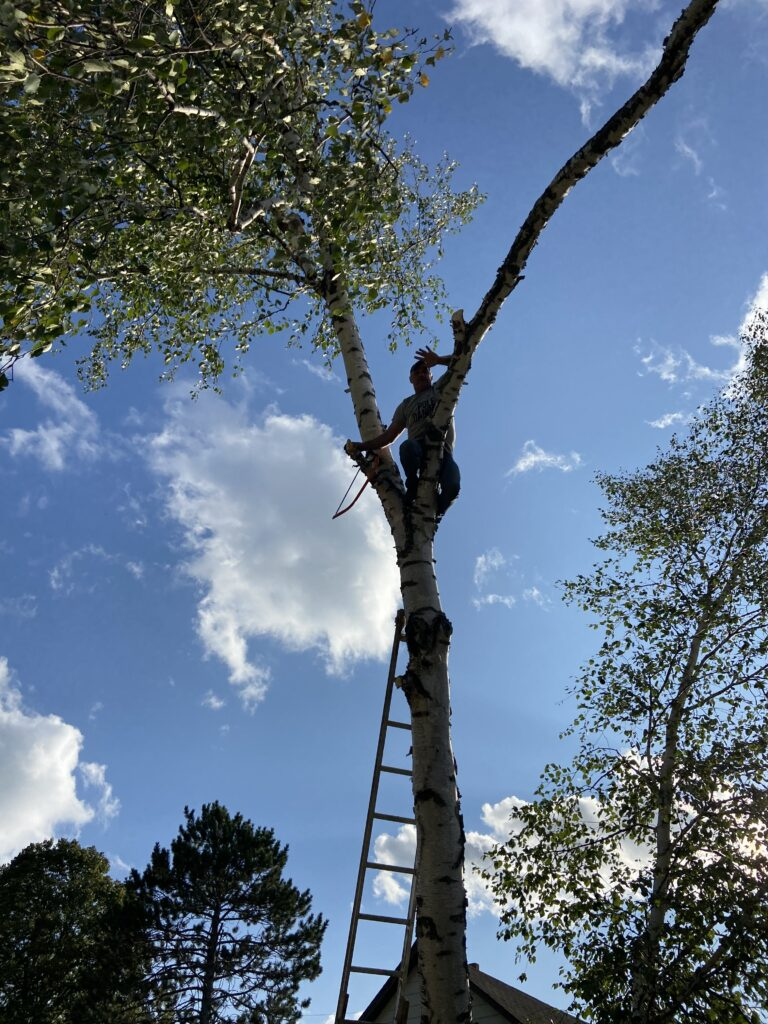 Justin Sparby posing for the camera while cutting down a birch tree