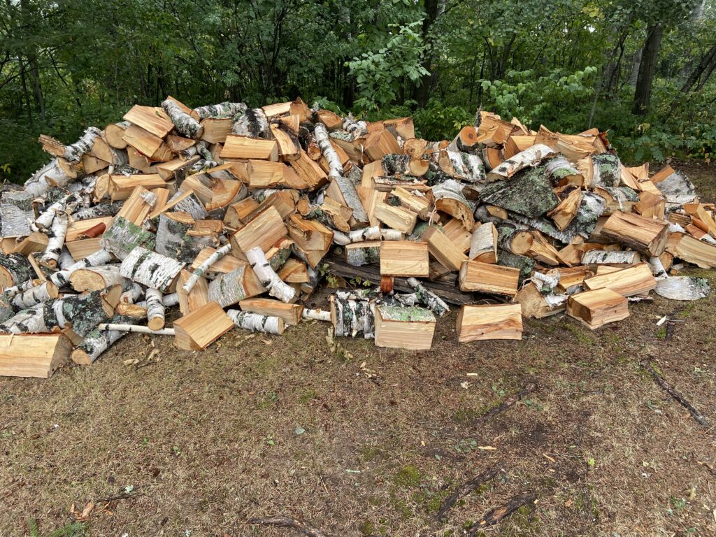 pile of wood after cutting up only 3 of the trees